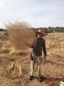 Hubby with a tumbleweed on the farm :)